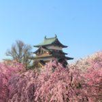 高島城の続日本100名城スタンプ