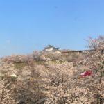 津山城の日本100名城・御城印情報